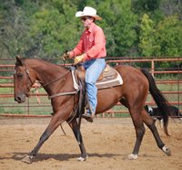 Indy under saddle with Jimmy Sego