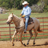 Maya under saddle with Jimmy Sego